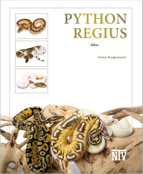 NEW: Python Regius, Stefan Broghammer (2nd revised English-edition) MARCH 2019