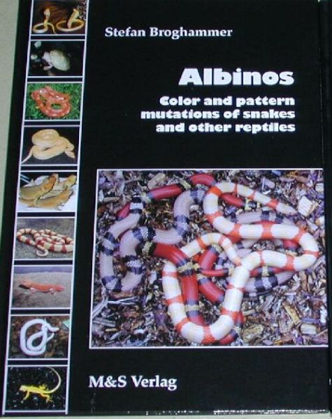 Albinos, color and pattern mutations of snakes and other reptile
