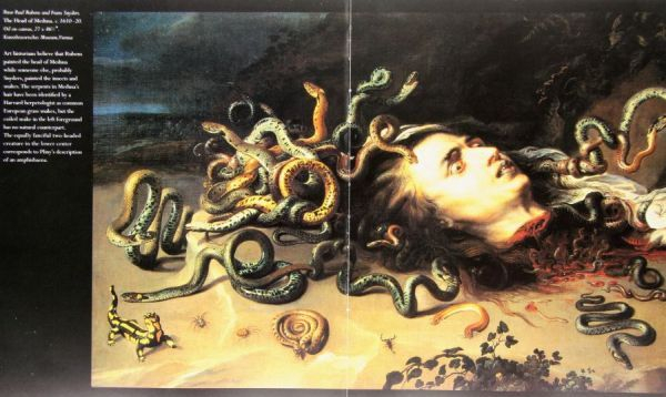 "Grafik ""The Head of Medusa"