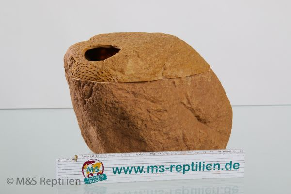 M&S Reptile Hide Box, Schlupfbox mit Magnetdeckel, LARGE (ERS28L)